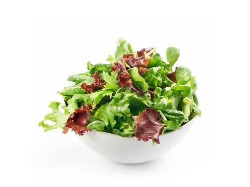 Frischer Salat aus regionalen Anbau ums fränkische Seenland