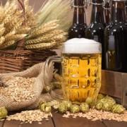 Bier im Biergarten